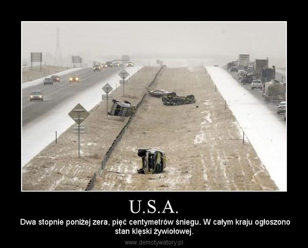 U.S.A. –  Dwa stopnie poniżej zera, pięć centymetrów śniegu. W całym kraju ogłoszonostan klęski żywiołowej.