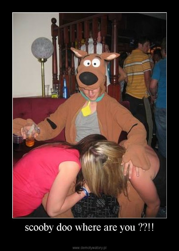 scooby doo where are you ??!! –