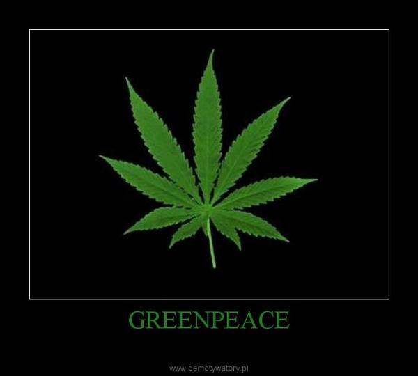 GREENPEACE –