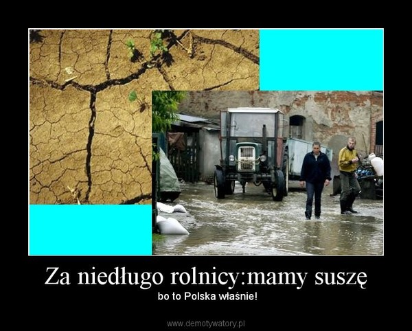 Za niedługo rolnicy:mamy suszę –  bo to Polska właśnie!