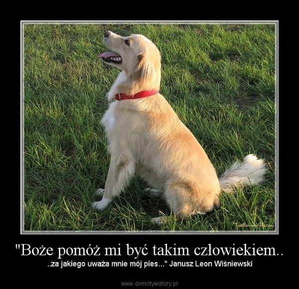 """""""Boże pomóż mi być takim człowiekiem.. – ..za jakiego uważa mnie mój pies..."""" Janusz Leon Wiśniewski"""