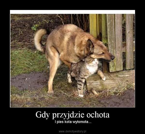Gdy przyjdzie ochota –  I pies kota wyłomota...