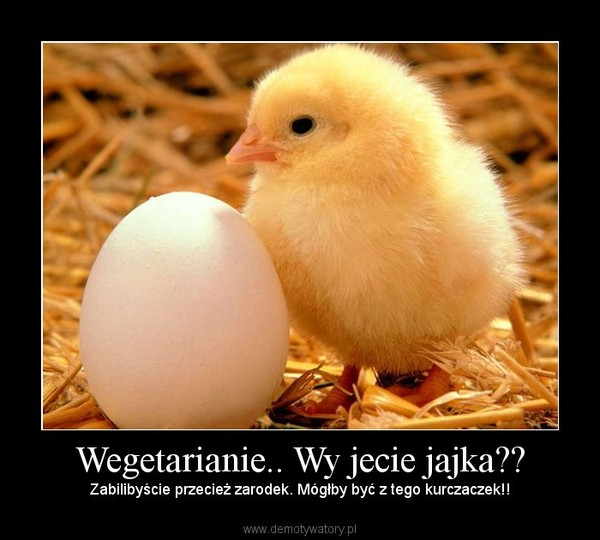 Wegetarianie.. Wy jecie jajka?? – Zabilibyście przecież zarodek. Mógłby być z tego kurczaczek!!