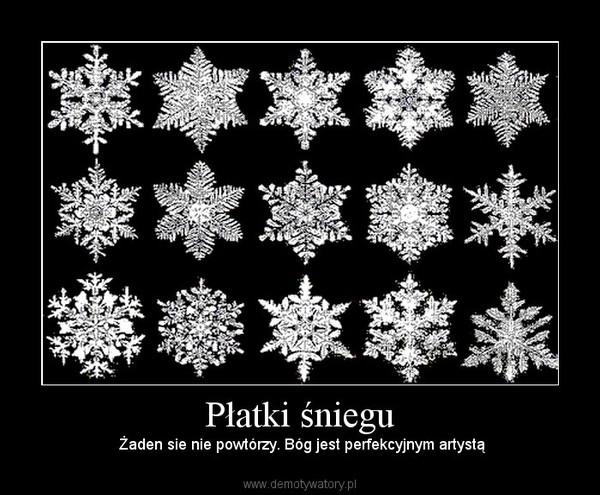 Płatki śniegu – Żaden sie nie powtórzy. Bóg jest perfekcyjnym artystą