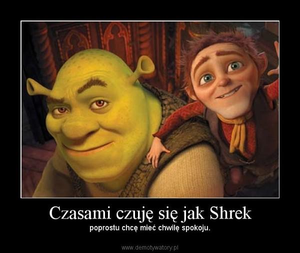 Czasami czuję się jak Shrek – poprostu chcę mieć chwilę spokoju.