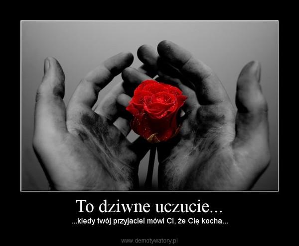 To dziwne uczucie... – ...kiedy twój przyjaciel mówi Ci, że Cię kocha...