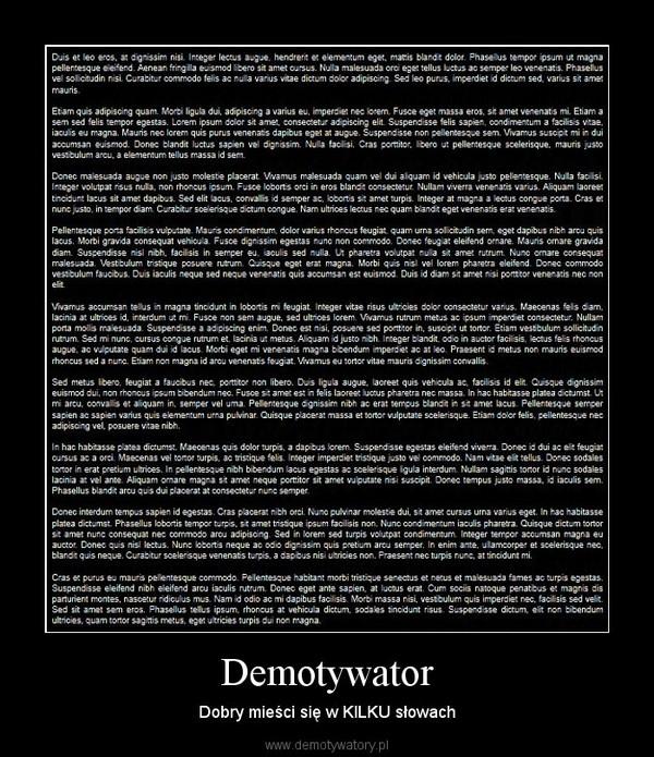 Demotywator – Dobry mieści się w KILKU słowach