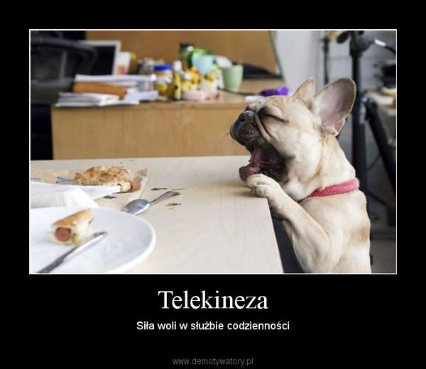 Telekineza – Siła woli w służbie codzienności