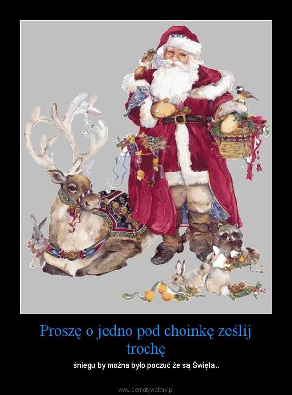 Proszę o jedno pod choinkę ześlij trochę – śniegu by można było poczuć że są Święta..