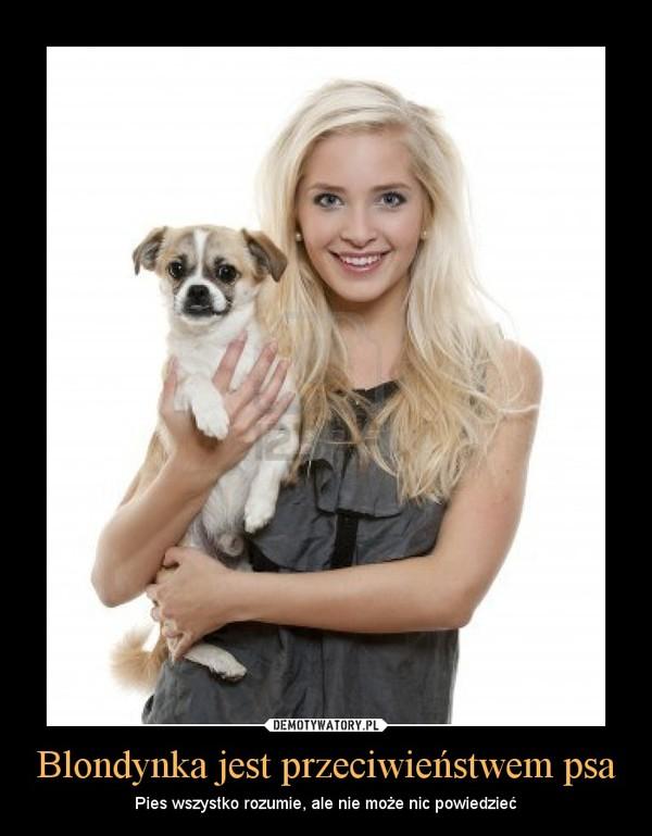 Blondynka jest przeciwieństwem psa – Pies wszystko rozumie, ale nie może nic powiedzieć