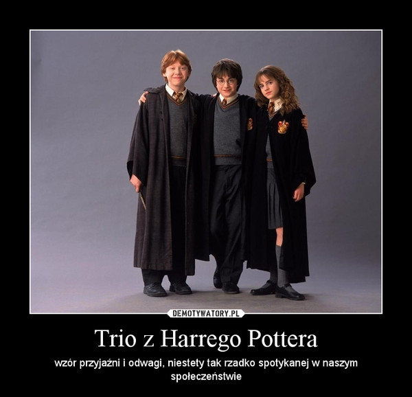 Trio z Harrego Pottera – wzór przyjaźni i odwagi, niestety tak rzadko spotykanej w naszym społeczeństwie