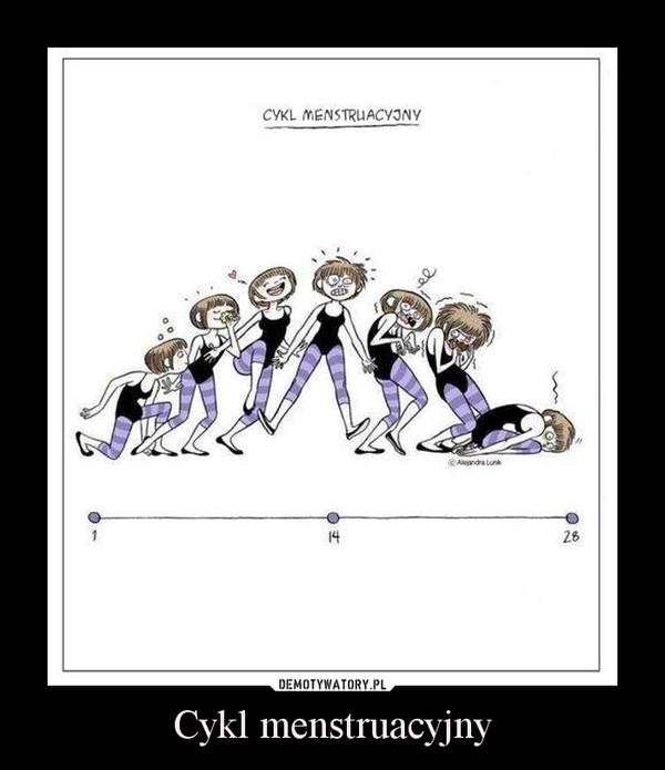 Cykl menstruacyjny –