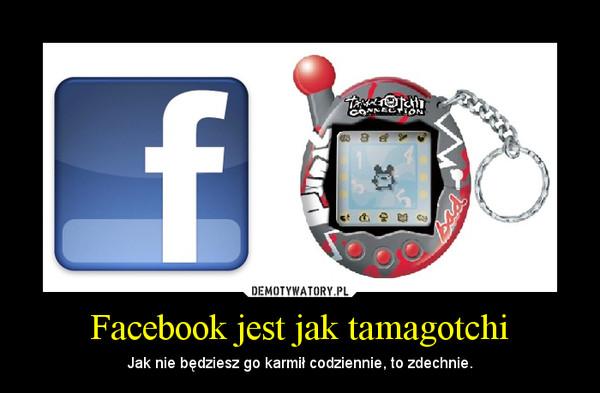 Facebook jest jak tamagotchi – Jak nie będziesz go karmił codziennie, to zdechnie.