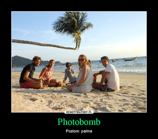 Photobomb – Poziom: palma