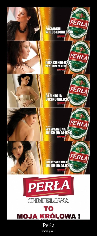 Perła – wsród piw!!!