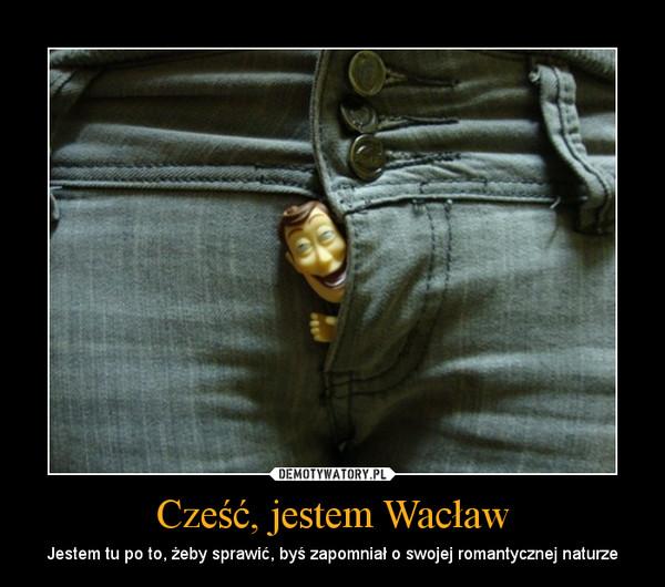 Cześć, jestem Wacław – Jestem tu po to, żeby sprawić, byś zapomniał o swojej romantycznej naturze