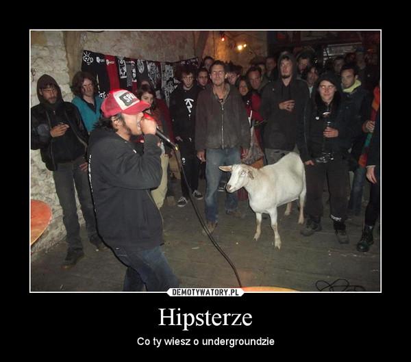 Hipsterze – Co ty wiesz o undergroundzie