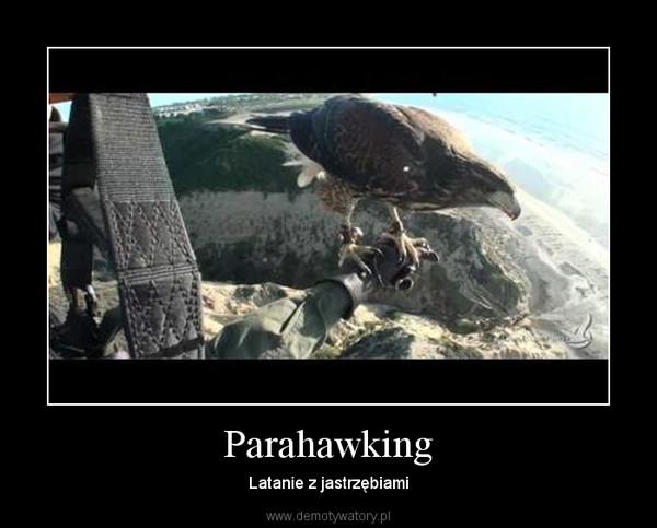 Parahawking – Latanie z jastrzębiami