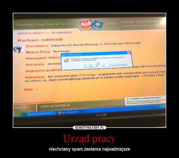 Urząd pracy – niechciany spam zasłania najważniejsze