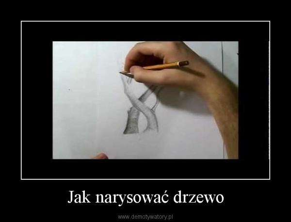 Jak narysować drzewo –