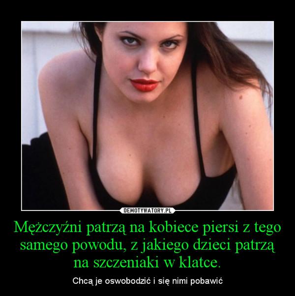 Mężczyźni patrzą na kobiece piersi z tego samego powodu, z jakiego dzieci patrzą na szczeniaki w klatce. – Chcą je oswobodzić i się nimi pobawić
