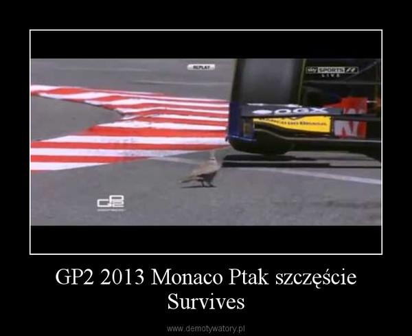 GP2 2013 Monaco Ptak szczęście Survives –