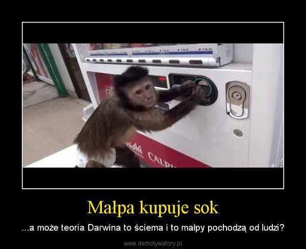 Małpa kupuje sok – ...a może teoria Darwina to ściema i to małpy pochodzą od ludzi?