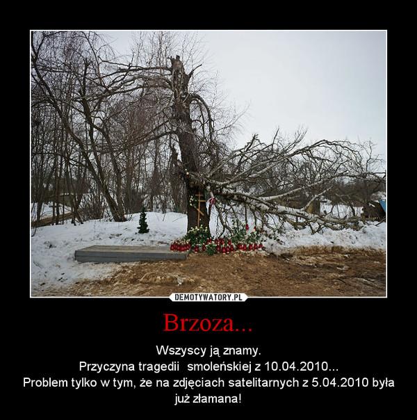 Brzoza... – Wszyscy ją znamy.Przyczyna tragedii  smoleńskiej z 10.04.2010...Problem tylko w tym, że na zdjęciach satelitarnych z 5.04.2010 była już złamana!