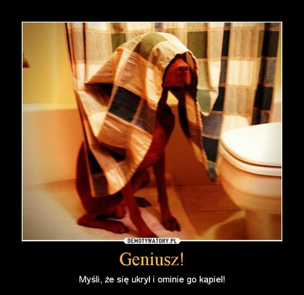 Geniusz! – Myśli, że się ukrył i ominie go kąpiel!