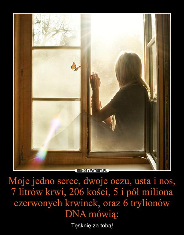Moje jedno serce, dwoje oczu, usta i nos, 7 litrów krwi, 206 kości, 5 i pół miliona czerwonych krwinek, oraz 6 trylionów DNA mówią: – Tęsknię za tobą!