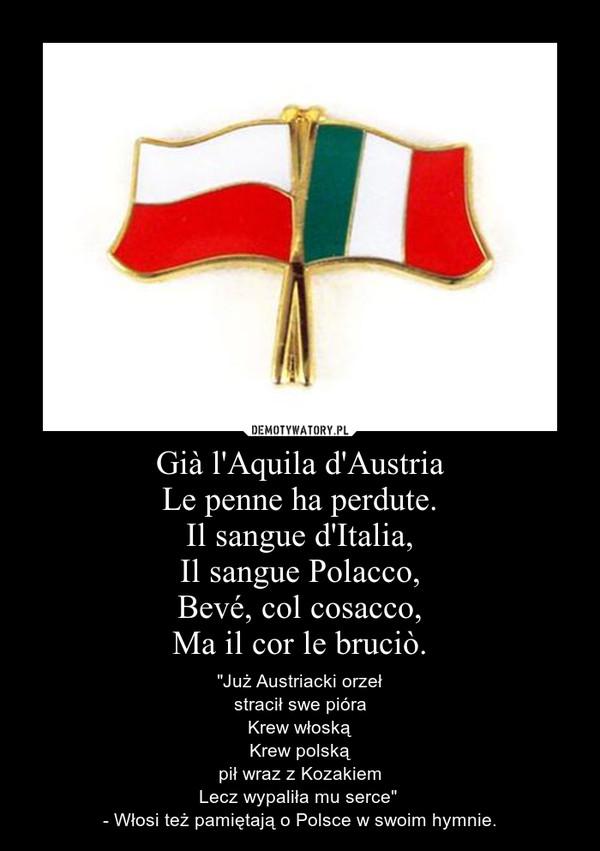 """Già l'Aquila d'AustriaLe penne ha perdute.Il sangue d'Italia,Il sangue Polacco,Bevé, col cosacco,Ma il cor le bruciò. – """"Już Austriacki orzeł\nstracił swe pióra\nKrew włoską\nKrew polską\npił wraz z Kozakiem\nLecz wypaliła mu serce"""" \n- Włosi też pamiętają o Polsce w swoim hymnie."""