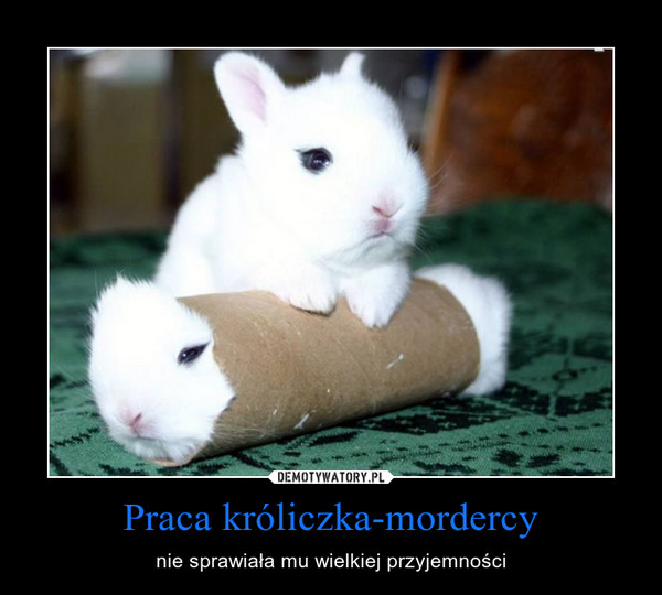 Praca króliczka-mordercy – nie sprawiała mu wielkiej przyjemności