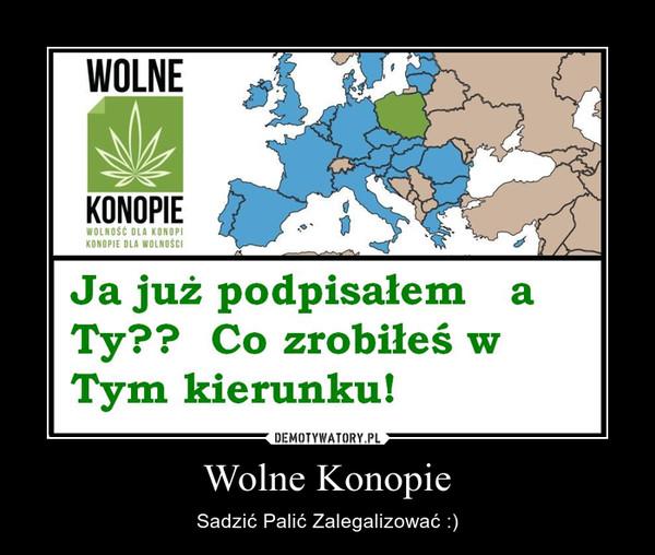 Wolne Konopie – Sadzić Palić Zalegalizować :)