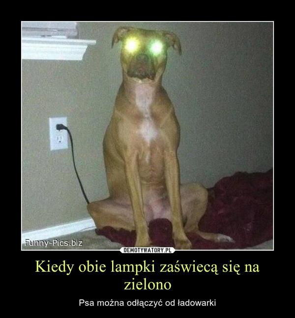 Kiedy obie lampki zaświecą się na zielono – Psa można odłączyć od ładowarki