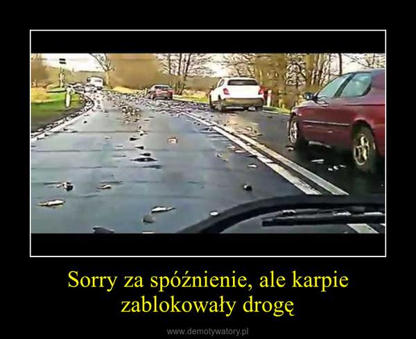 Sorry za spóźnienie, ale karpie zablokowały drogę –
