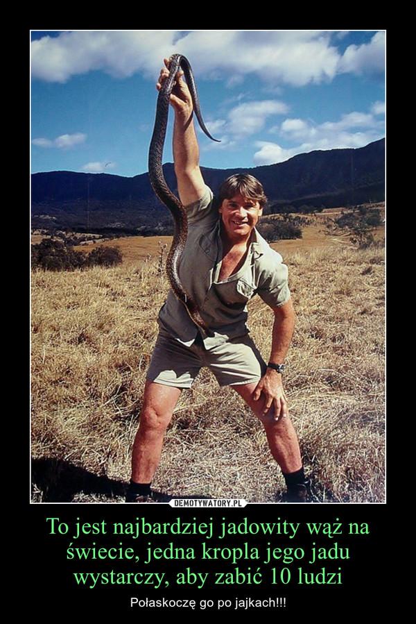 To jest najbardziej jadowity wąż na świecie, jedna kropla jego jadu wystarczy, aby zabić 10 ludzi – Połaskoczę go po jajkach!!!