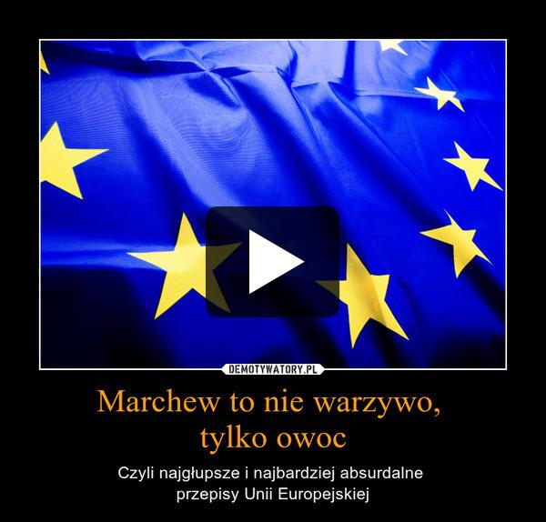 Marchew to nie warzywo, tylko owoc – Czyli najgłupsze i najbardziej absurdalne \nprzepisy Unii Europejskiej