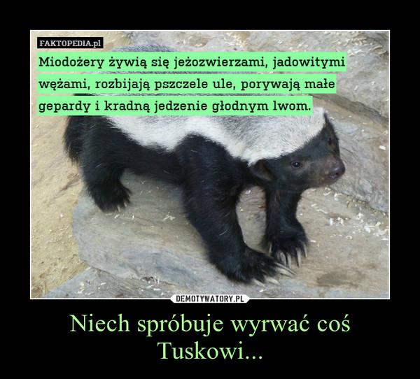 Niech spróbuje wyrwać coś Tuskowi... –