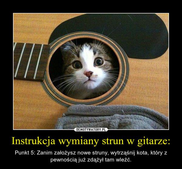 Instrukcja wymiany strun w gitarze: – Punkt 5: Zanim założysz nowe struny, wytrząśnij kota, który z pewnością już zdążył tam wleźć.