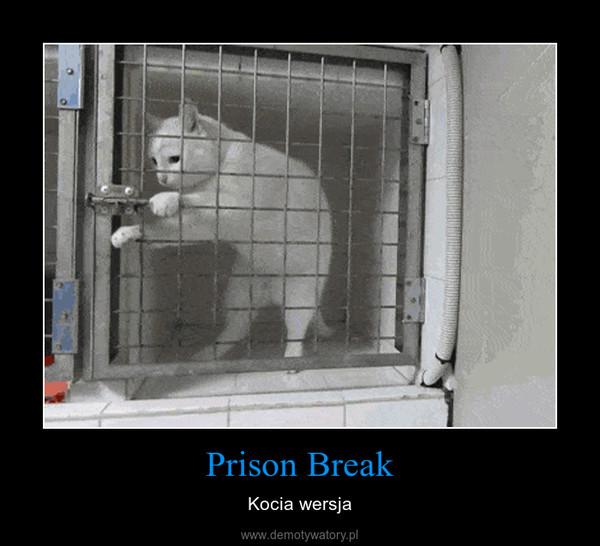Prison Break – Kocia wersja