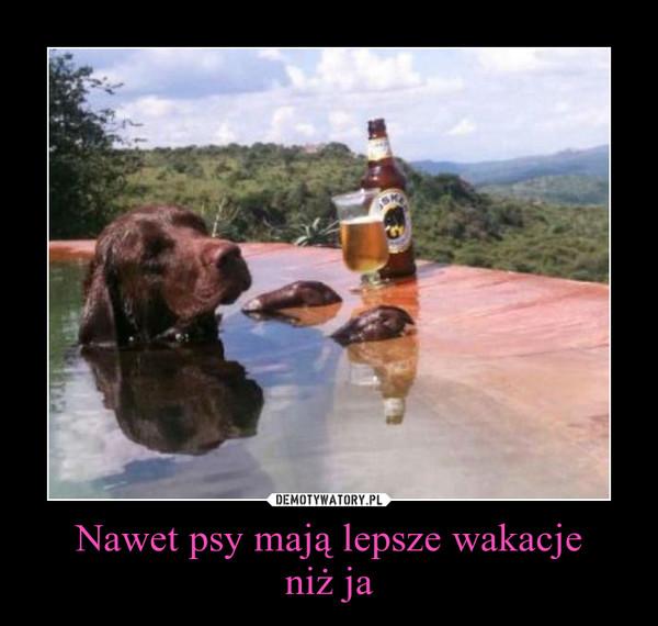 Nawet psy mają lepsze wakacjeniż ja –