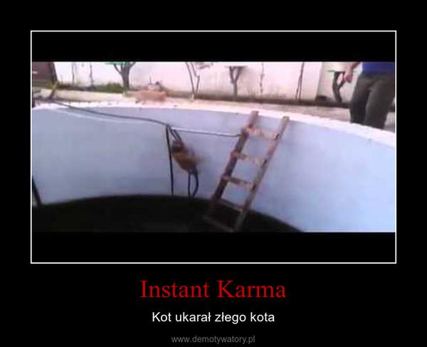 Instant Karma – Kot ukarał złego kota