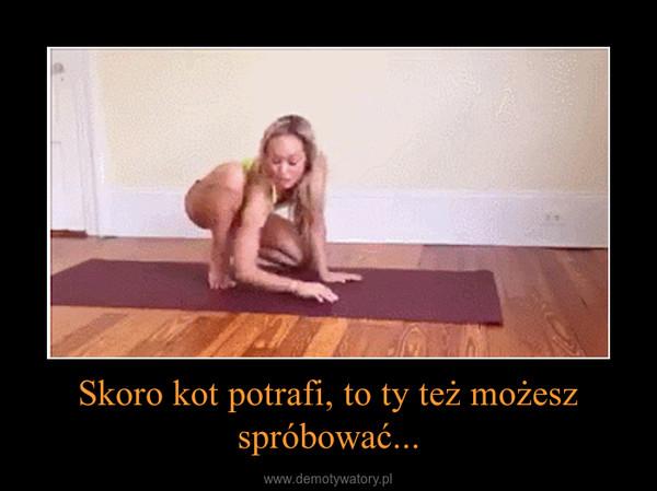 Skoro kot potrafi, to ty też możesz spróbować... –