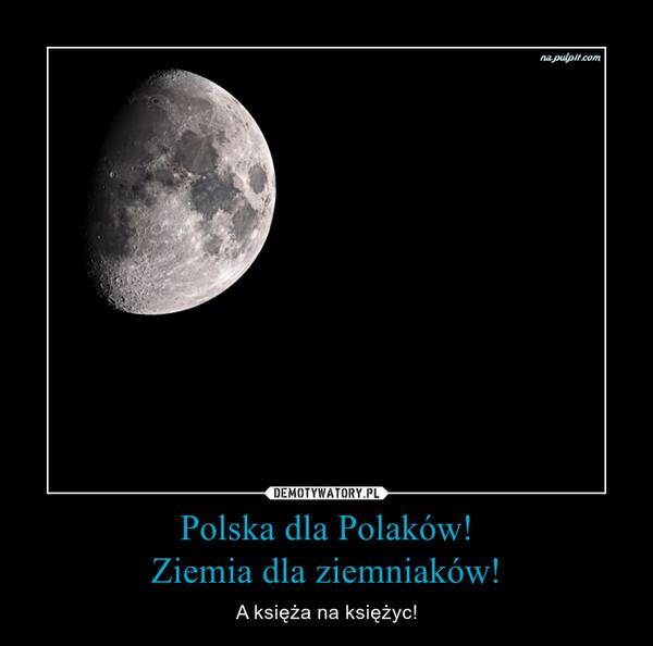 Polska dla Polaków!Ziemia dla ziemniaków! – A księża na księżyc!