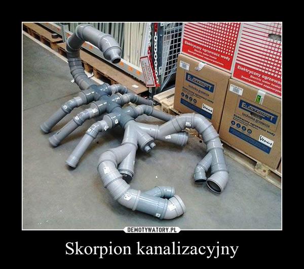 Skorpion kanalizacyjny –