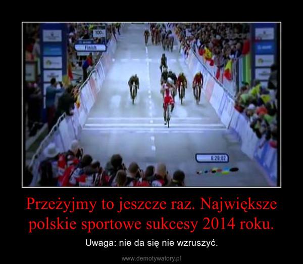 Przeżyjmy to jeszcze raz. Największe polskie sportowe sukcesy 2014 roku. – Uwaga: nie da się nie wzruszyć.