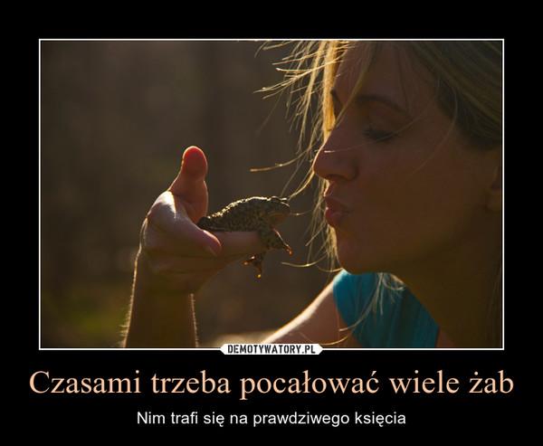 Czasami trzeba pocałować wiele żab – Nim trafi się na prawdziwego księcia