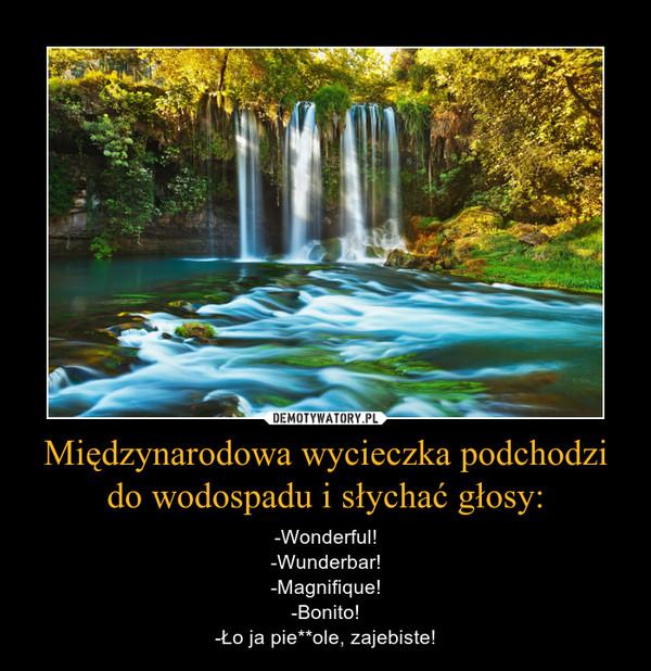 Międzynarodowa wycieczka podchodzi do wodospadu i słychać głosy: – -Wonderful!-Wunderbar!-Magnifique!-Bonito!-Ło ja pie**ole, zajebiste!