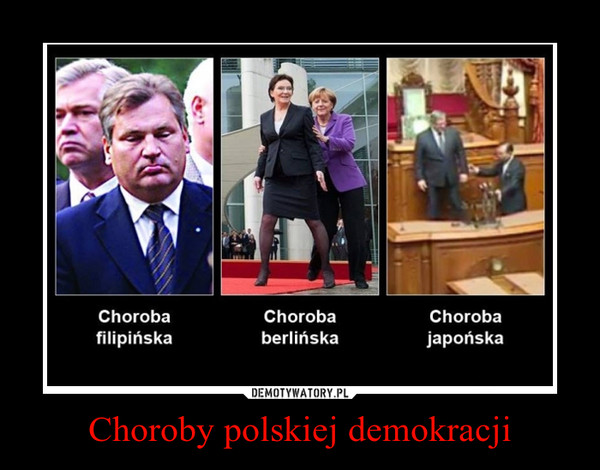 Choroby polskiej demokracji –