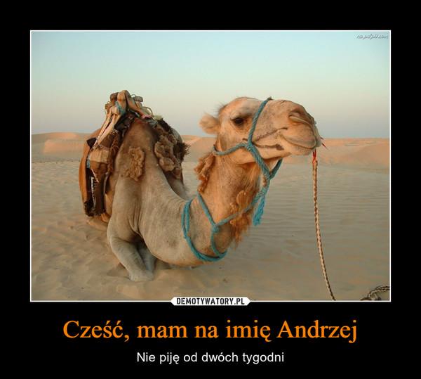 Cześć, mam na imię Andrzej – Nie piję od dwóch tygodni